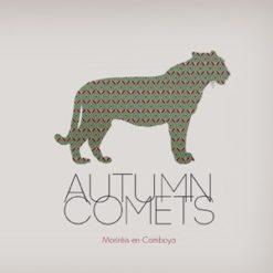 Autumn Comets (vinilo )